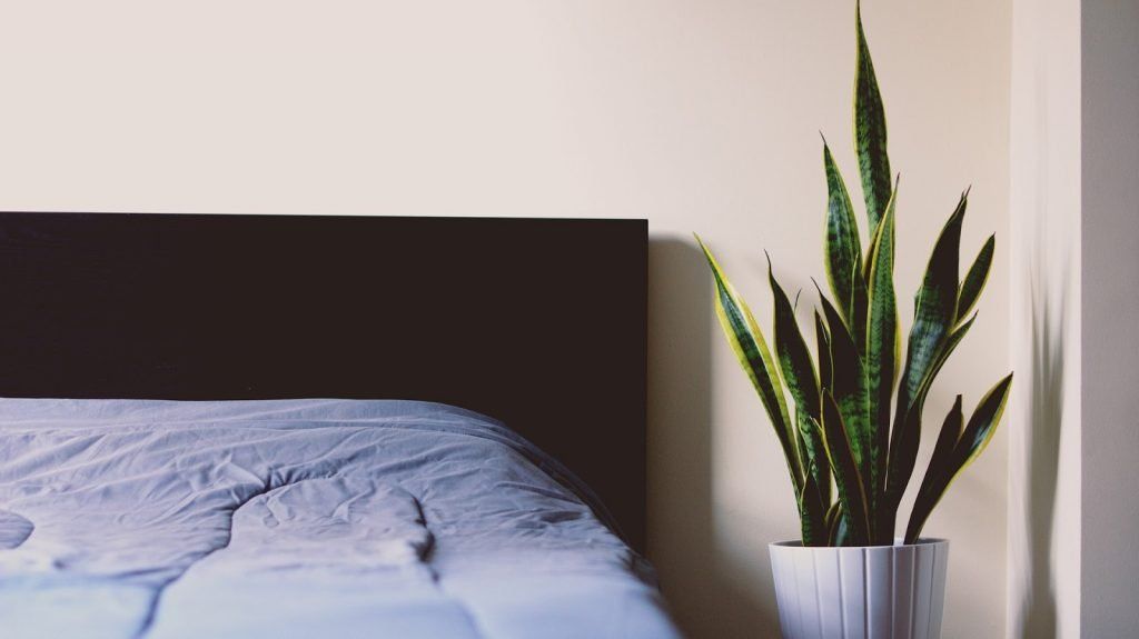 Indoor Air Pollution from Mattresses