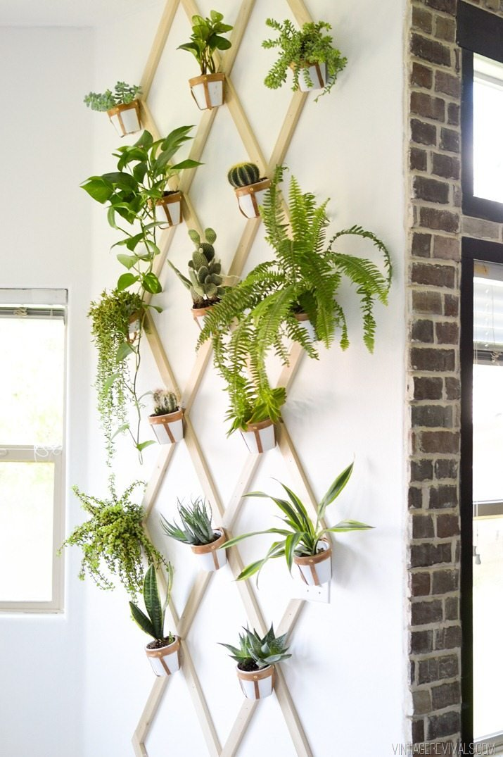 05 DIY Wood and Leather Trellis Plant Wall Simphome com