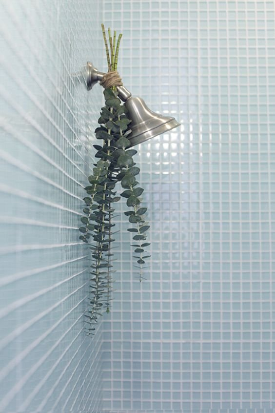 33 Easy Ways To Bring The Spa To Your Shower With Eucalyptus Simphome