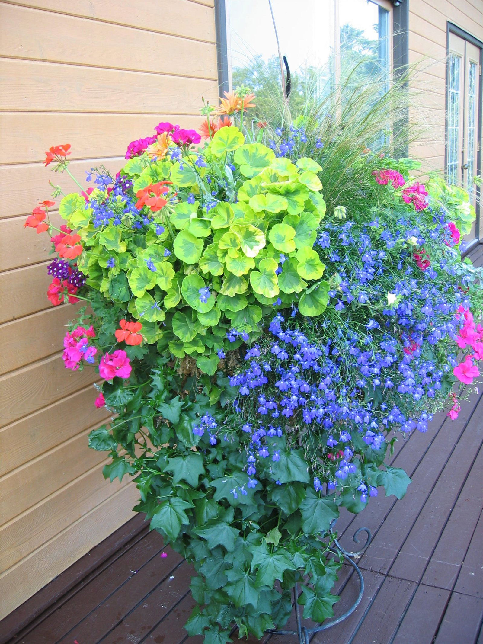 plant supports amazon iron inside plant combination ideas for container gardens
