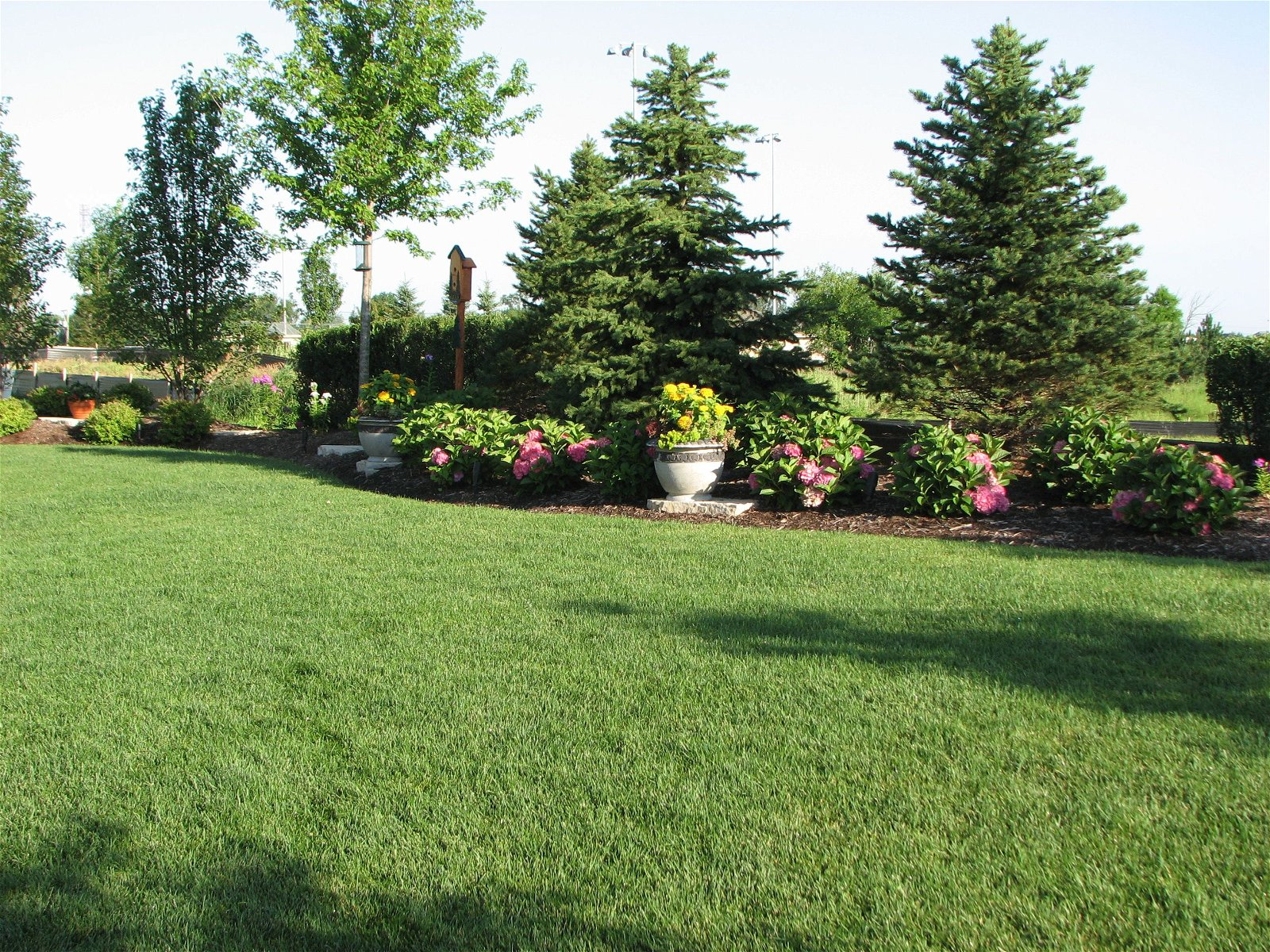 11.SIMPHOME.COM backyard landscaping for privacy existing home landscaping with 10 concepts of how to