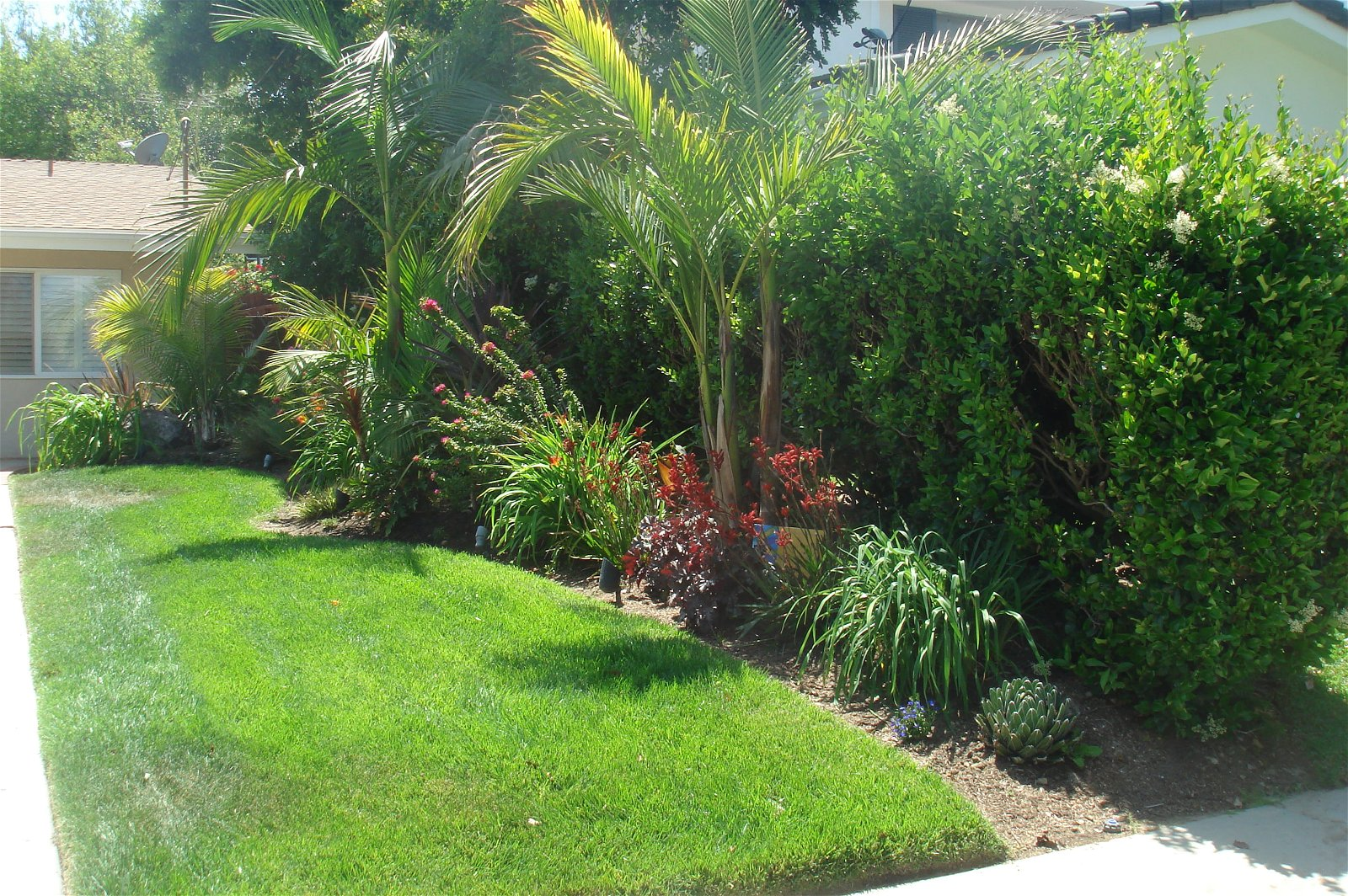 22.SIMPHOME.COM tropical landscaping ideas for front yard small backyard landscape