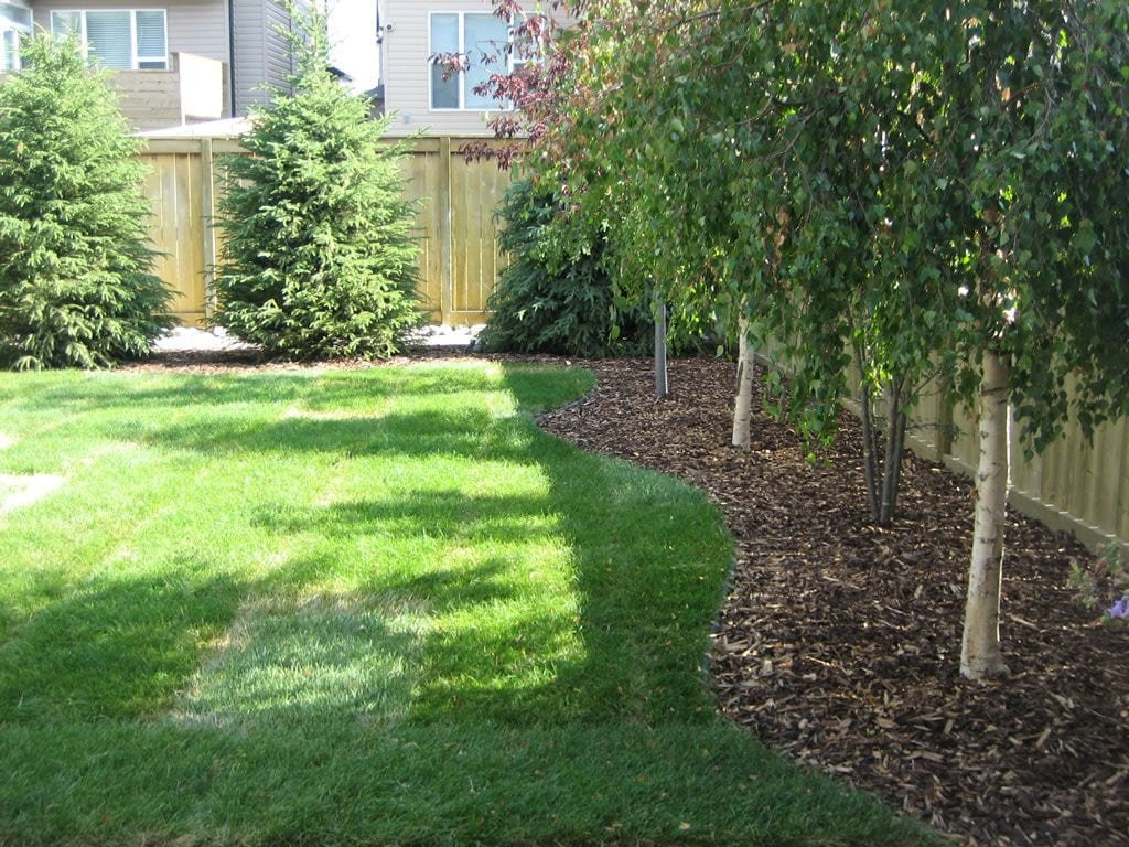 Simphome.com best backyard tree ideas on pictures of houses and play best 2020