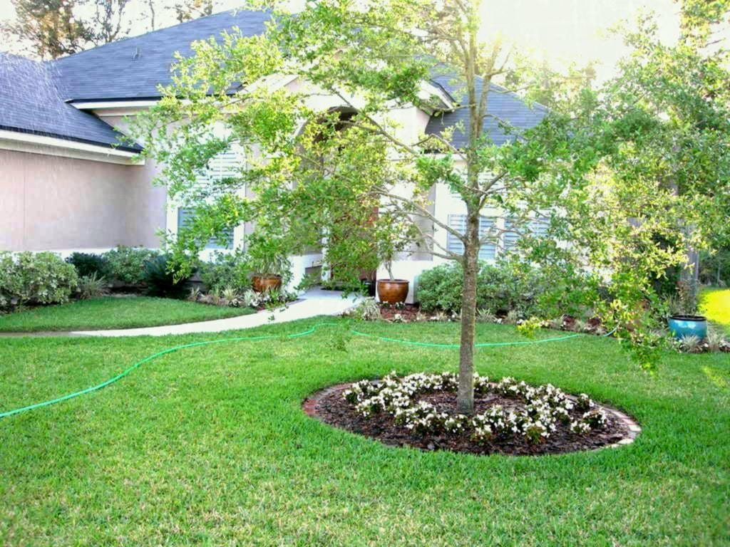 Simphome.com front yard tree landscaping ideas front yard landscaping ideas with intended for 2020 2021