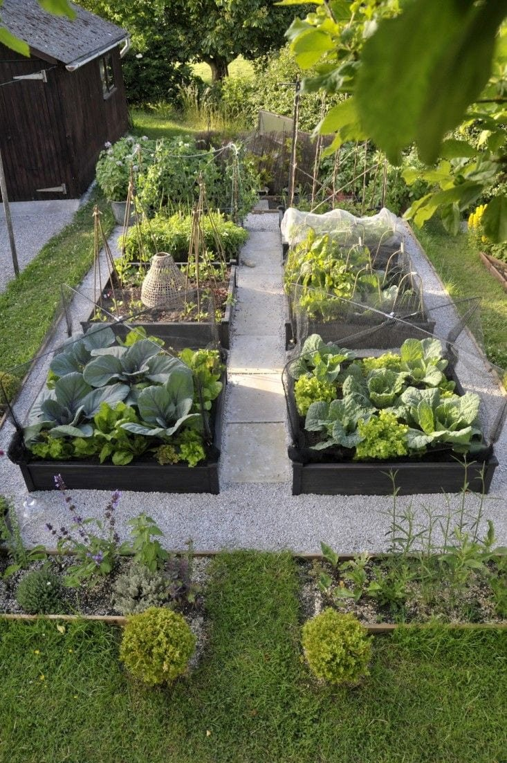 Simphome.com best edible garden tied judy in somerset england landscaping for 10 edible garden ideas awesome as well as interesting