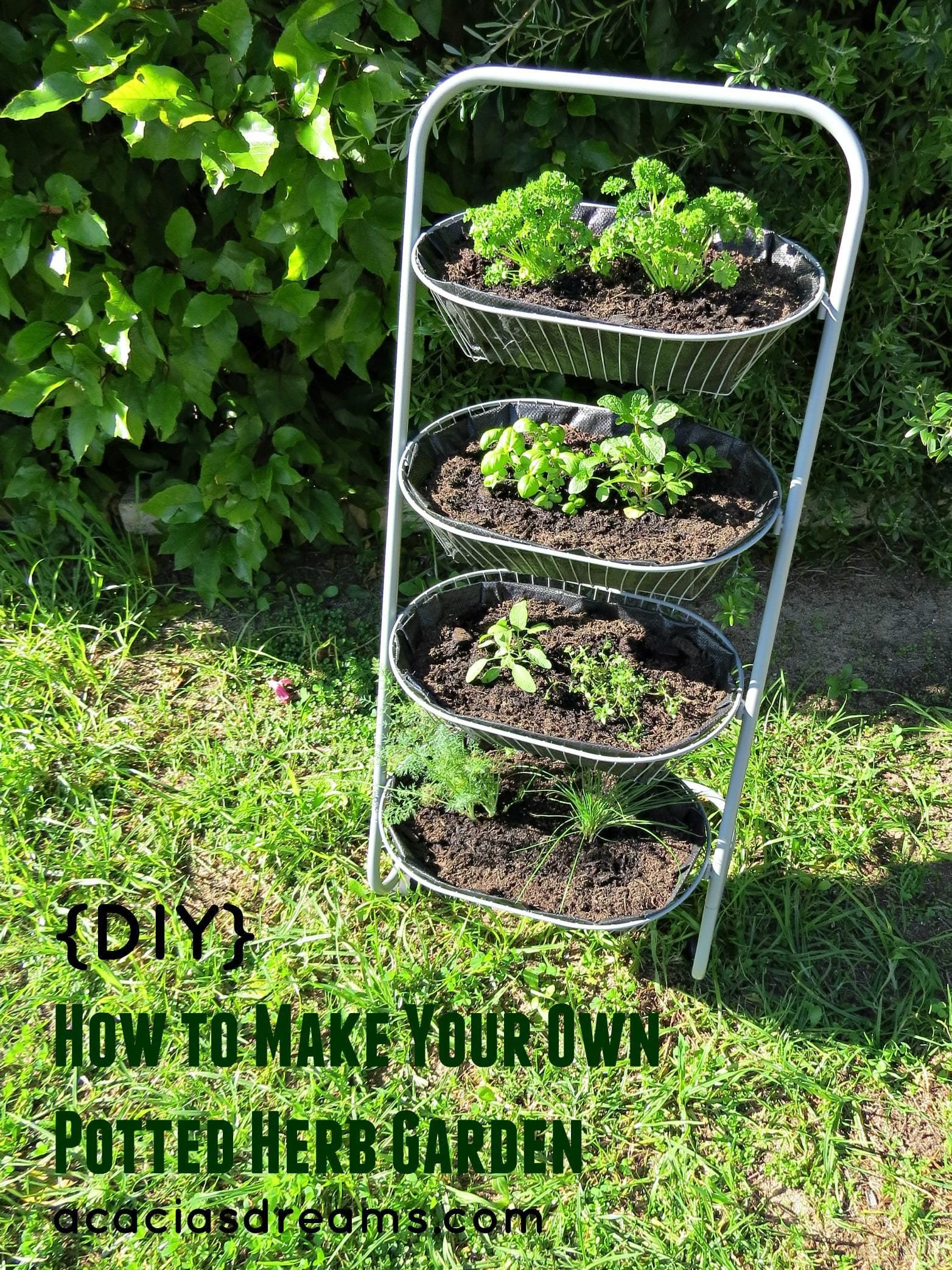 Simphome.com diy how to make your own potted herb garden diy pinterest inside potted herb garden ideas
