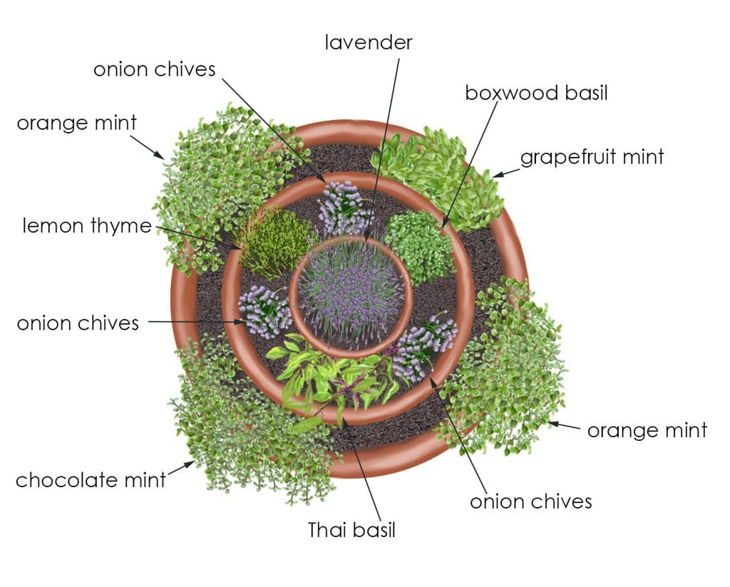 Simphome.com garden ideas herb container garden bar none country store inside 10 potted herb garden ideas elegant and stunning