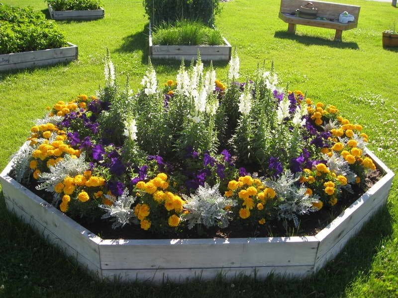 4. Artistic and Center of Attention Lavender planter ideas by Simphome.com 2